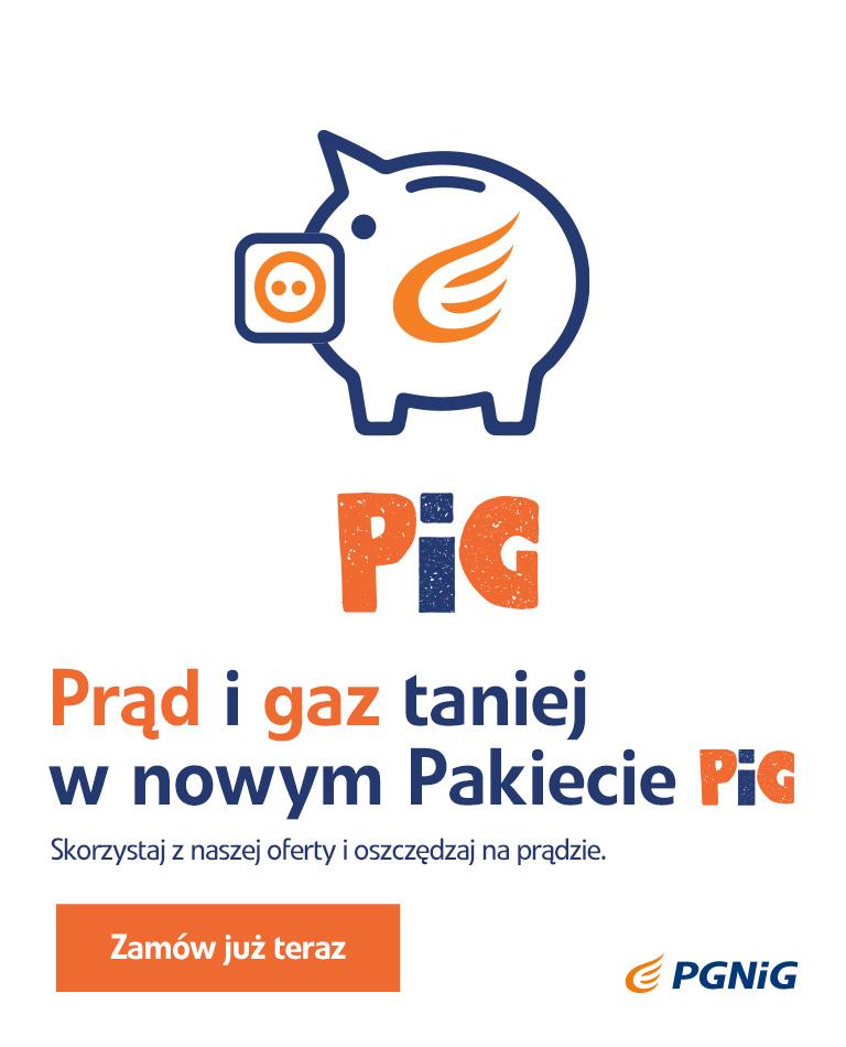 PGNiG_popup_768x950_2.jpg -